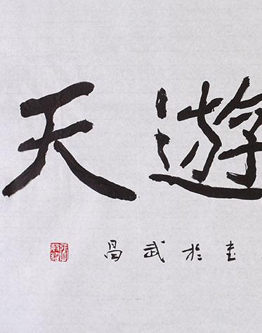张敏耀 《云鹤游天》 书法 2013年 .JPG